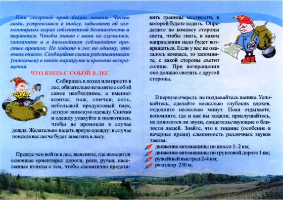 Памяткаf Безопасное поведение в лесу-